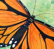 Wanderer (Monarch) Butterfly Watercolour Painting Sticker