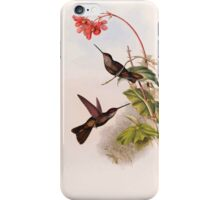 A monograph of the Trochilidæ or family of humming birds by John Gould 1861 V4 218 iPhone Case/Skin