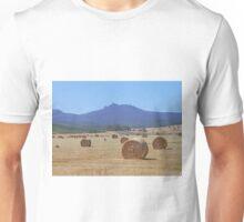 Hay below Ben Lomond Unisex T-Shirt
