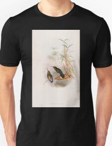 A monograph of the Trochilidæ or family of humming birds by John Gould 1861 V2 054 Capylopterus Cuvieri T-Shirt