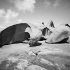 Remarkable Rocks, Flinders Chase, Kangaroo Island by Silvia Tomarchio