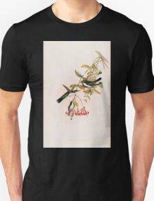 A monograph of the Trochilidæ or family of humming birds by John Gould 1861 V4 050 T-Shirt
