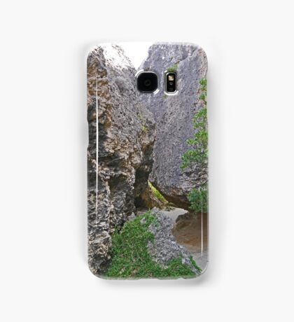 The Walk to the Rockpool Samsung Galaxy Case/Skin