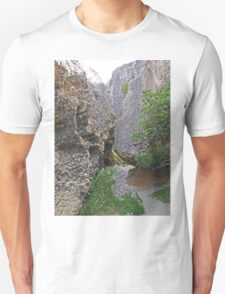 The Walk to the Rockpool T-Shirt