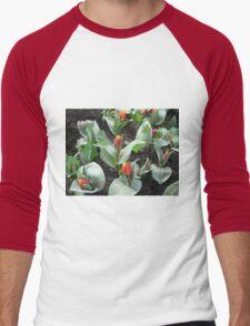 Cheeky Tulips - Keukenhof Gardens Men's Baseball ¾ T-Shirt
