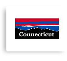 Connecticut Red White and Blue Canvas Print