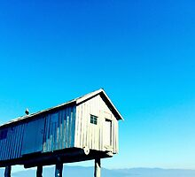 Vancouver Harbour shed on stilts by daxfullbrook