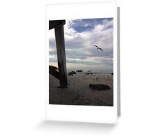 Beach Bound Seagulls Greeting Card