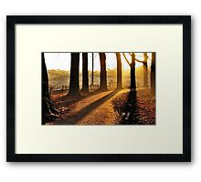 Starting out on a morning-dream ride Framed Print