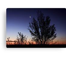 Moon-Landscape - Free State - South-Africa Canvas Print