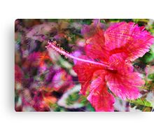 Hibiscus Winds Canvas Print