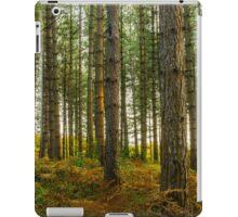 Bedgebury National Park iPad Case/Skin