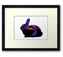 Sunset  Rabbit  Framed Print