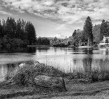 Loch Ard in Aberfoyle by Jeremy Lavender Photography