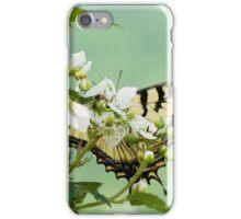 Butterfly on Blackberry Bush II iPhone Case/Skin