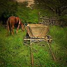 A Horse and Cart at Rest in Barda Village, Romania by Dennis Melling