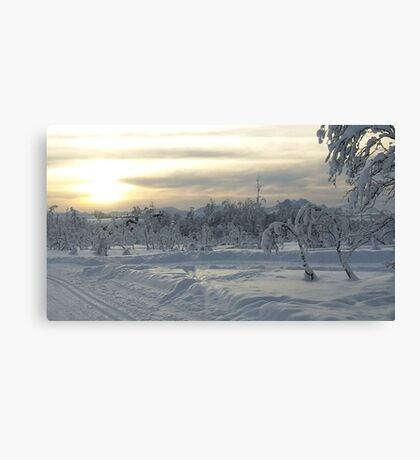 Snowy landscape during sunset Canvas Print