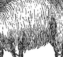 Vintage Llama Illustration Retro 1800s Black White Llamas Drawing Sticker