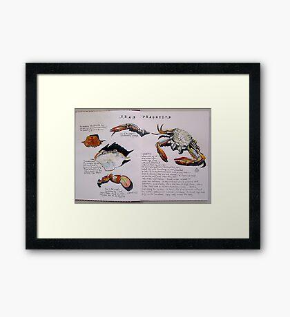 Crab Fragments Framed Print