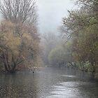 Rainy river. by Paul Pasco