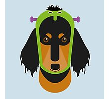 Halloween Dachshund Photographic Print