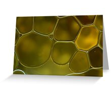 oil bubbles on water Greeting Card