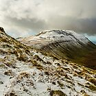 Ingleborough by David Lewins