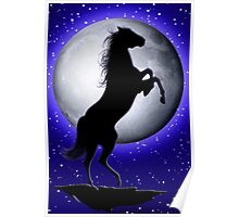 Wild Horse on Blue Moon  Poster