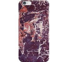 Ant and Grasshopper Abstract iPhone Case/Skin