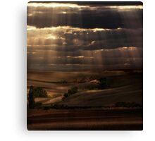 Sunny shower Canvas Print