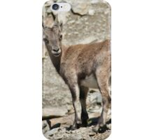 Mountain goat in the Alps iPhone Case/Skin