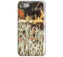 Table Coral with Fish iPhone Case/Skin
