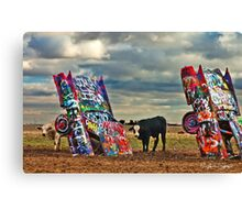 Cadillac Cows Canvas Print
