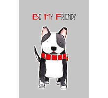 Be My Friend? - Black and White Dog with Big Red Collar Photographic Print