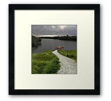 4122 Framed Print