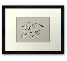 Golden Retriever Puppy: Freehand Line Drawing Framed Print