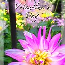Valentine's Day Dahlia by Owed To Nature