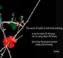 The Secret Of Health by BWBConcepts