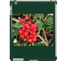 Here's Holly Where's Ivy iPad Case/Skin