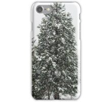Beautiful winter forest while snow flurry, Vosges mountains iPhone Case/Skin