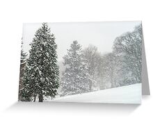 Beautiful winter forest while snow flurry, Vosges mountains Greeting Card