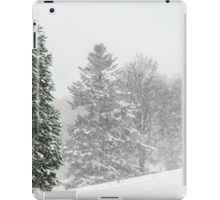 Beautiful winter forest while snow flurry, Vosges mountains iPad Case/Skin