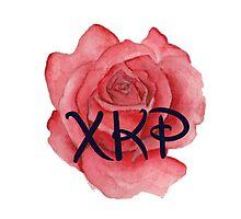 Chi Kappa Rho Rose Photographic Print