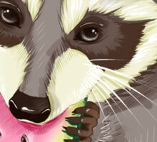 Raccoon with a watermelon Sticker