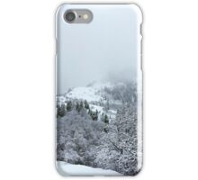 Winter Snow Storm Morning iPhone Case/Skin