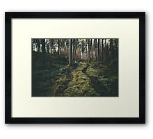 Boy walking through mystic forest landscape photography Framed Print