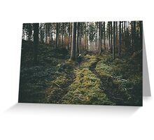 Boy walking through mystic forest landscape photography Greeting Card
