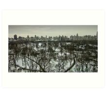 A View Across Central Park Art Print