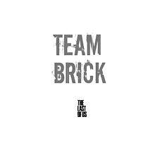 Team Brick - The Last Of Us by jolteonlove