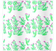 Prickly Pear Spring - White Poster